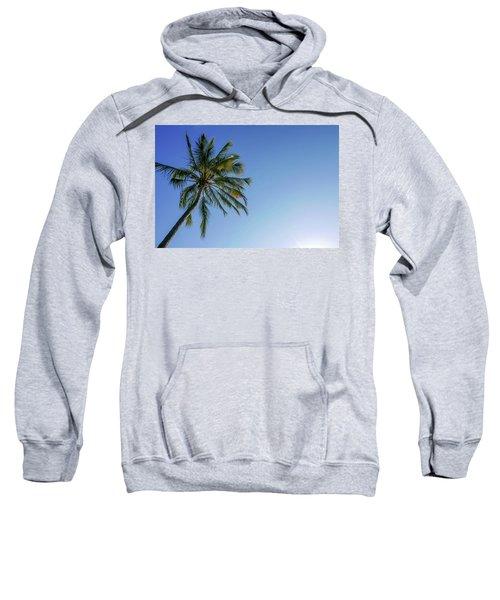 Shades Of Blue And A Palm Tree Sweatshirt