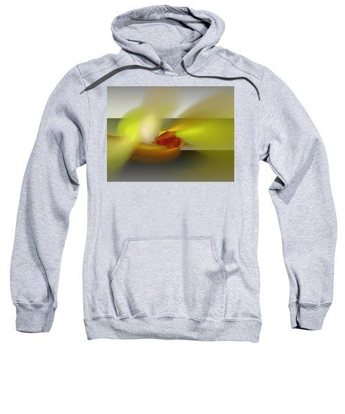 Signals Through The Flames Sweatshirt