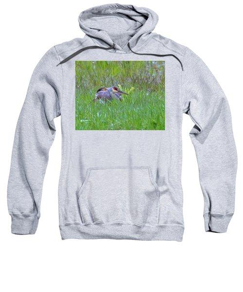 Single For Now  Sweatshirt