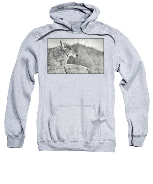 Sleepy Coyote Sweatshirt