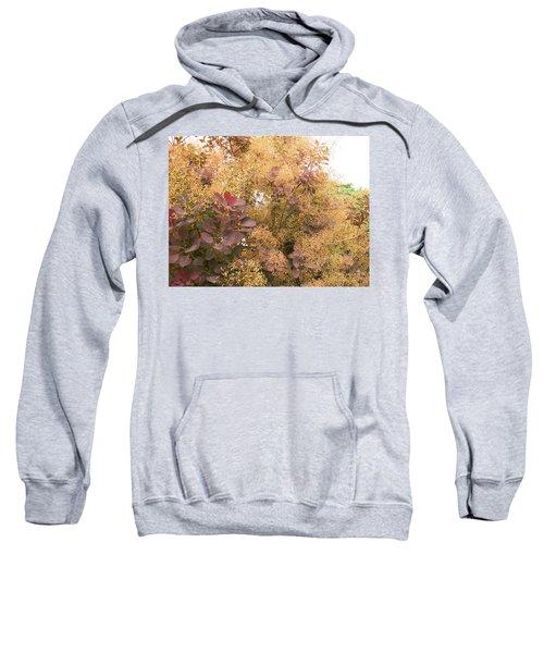 Smoke Bush  Sweatshirt