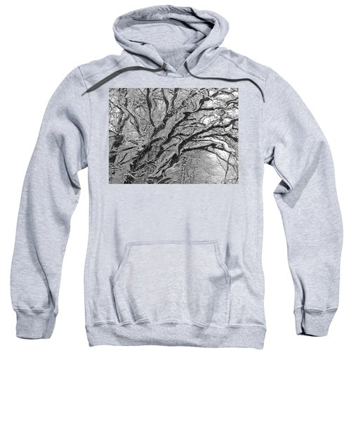Snow Melt Sweatshirt