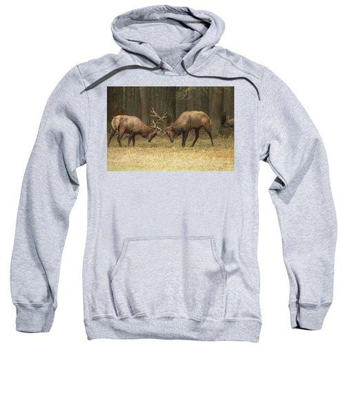 Sparring Sweatshirt