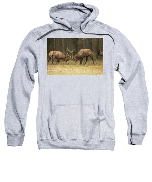Sparring Sweatshirt