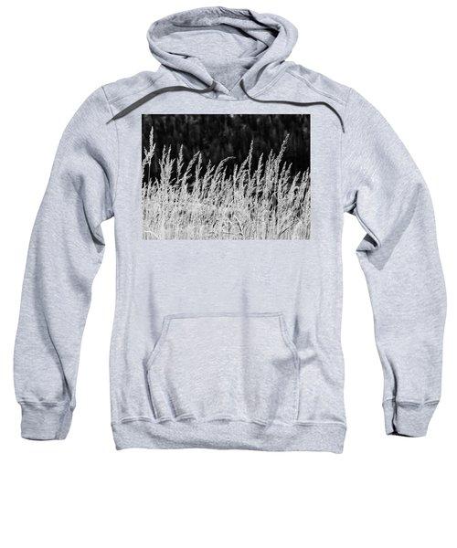 Spikes Sweatshirt