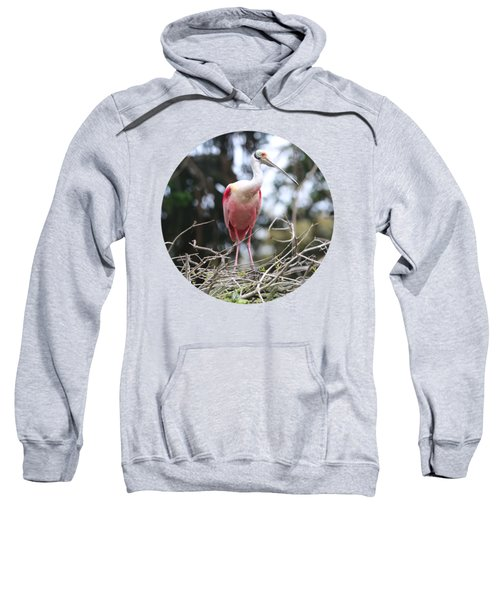 Spoonbill On Branches Sweatshirt