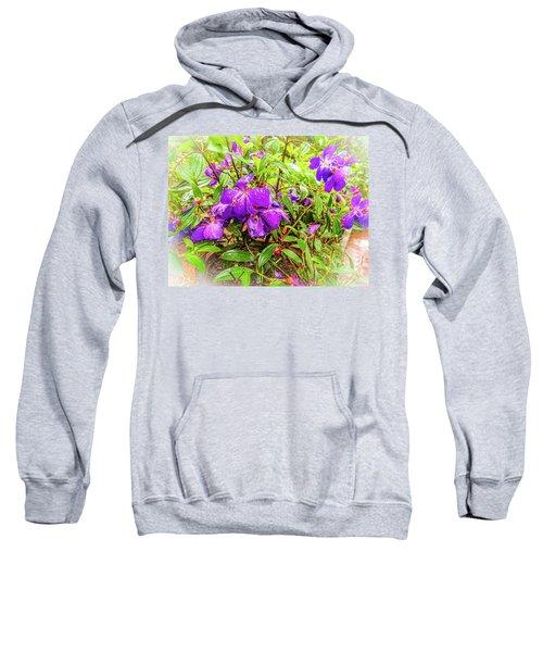 Spring Blossoms2 Sweatshirt