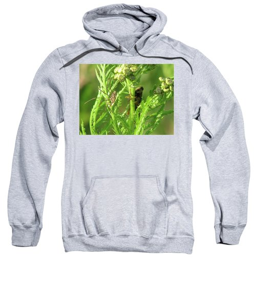 Standoff  Sweatshirt