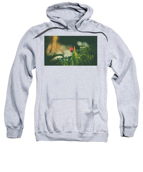 Start Of Spring Sweatshirt