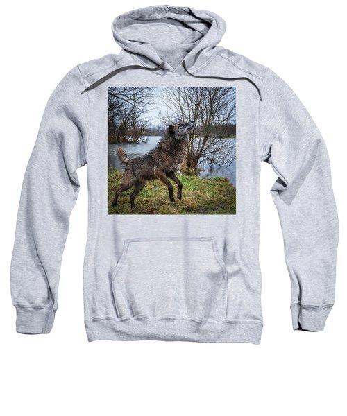 Stick Get It Sweatshirt