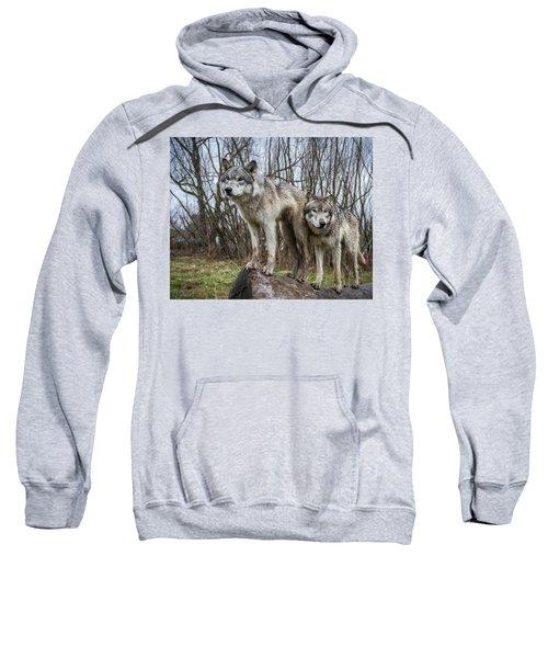 Still Lookin' Sweatshirt
