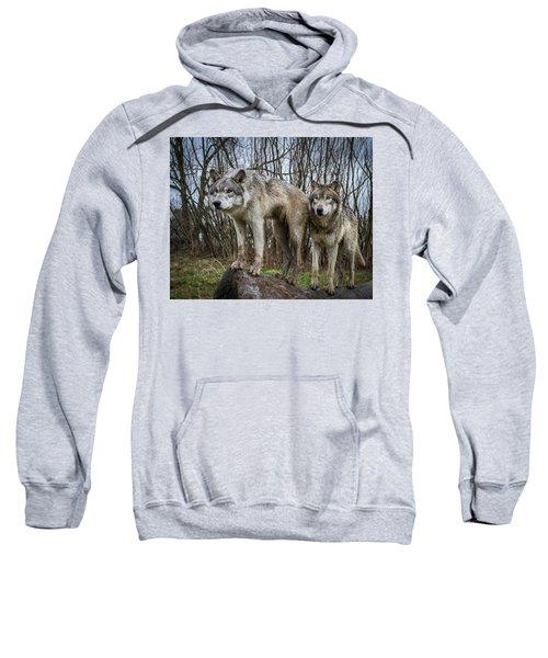 Still Watching Sweatshirt