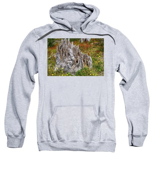 Stumps Of Trees Shattered In The 1980 Eruption Sweatshirt