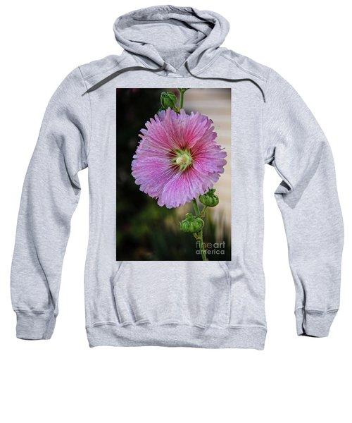 Stunning Pink Hollyhock Sweatshirt