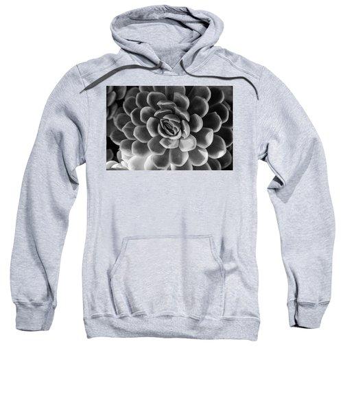 Succulent - Bw - 2 Sweatshirt