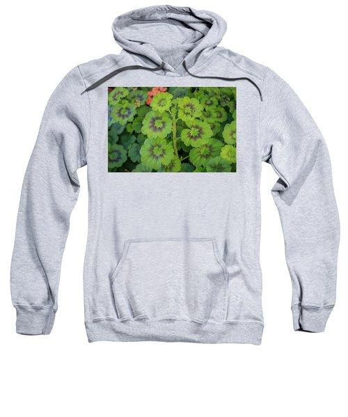 Summer Leaves Sweatshirt