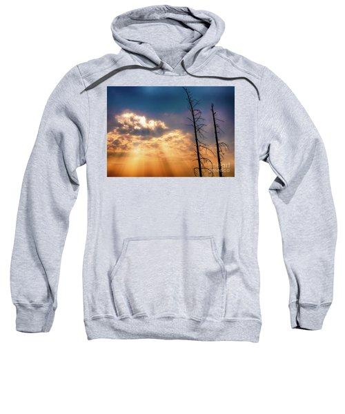 Sunbeams Sweatshirt