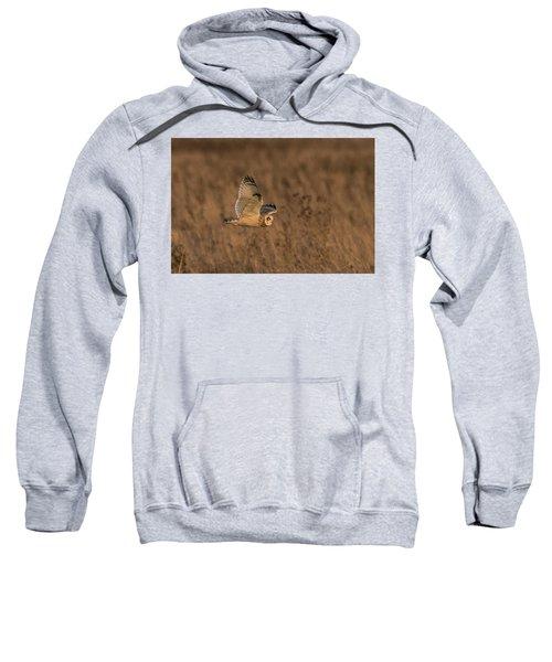 Sundown Flyby Sweatshirt