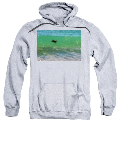 Surfing Turtle Sweatshirt