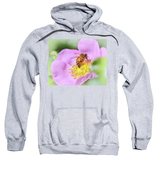 Sweet As Honey Sweatshirt