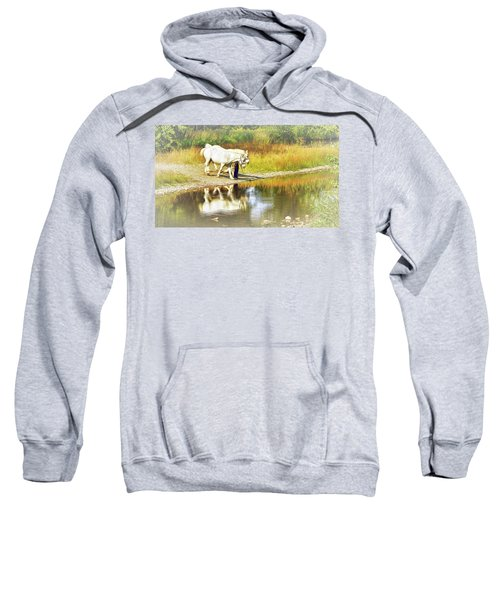 Leading The Horses To Water Sweatshirt