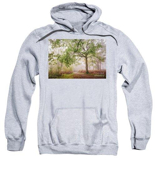 The Autumn Path Sweatshirt