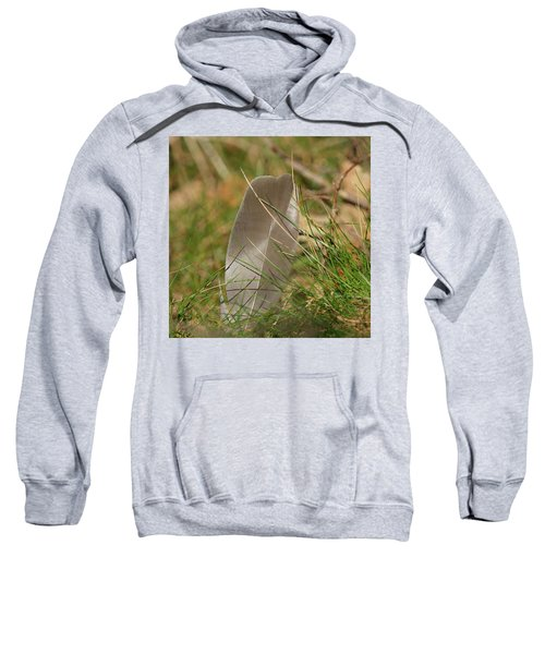 The Feather Sweatshirt