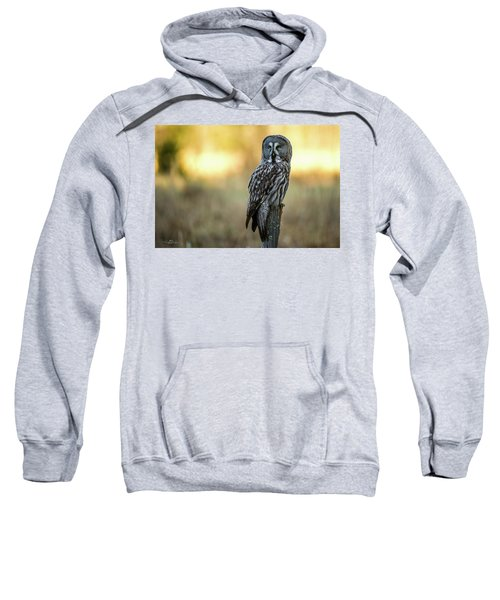 The Great Gray Owl In The Morning Sweatshirt