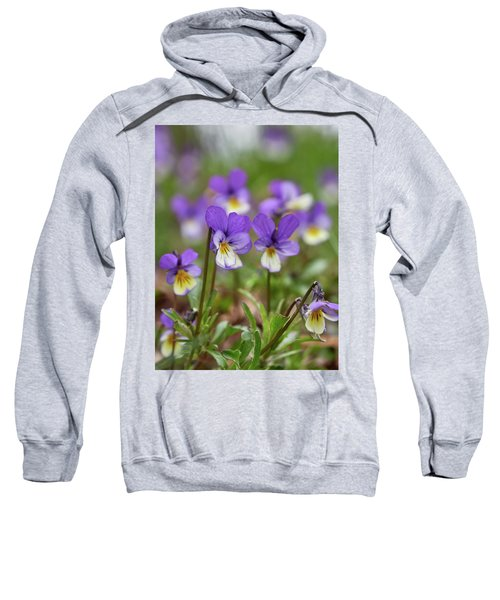 The Group. Jack-jump-up-and-kiss-me. Wild Pansy Sweatshirt