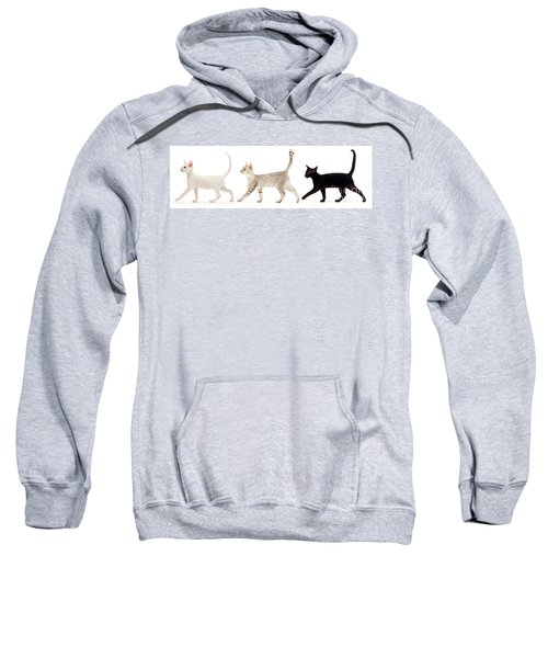 The Kits Parade - Three Sweatshirt