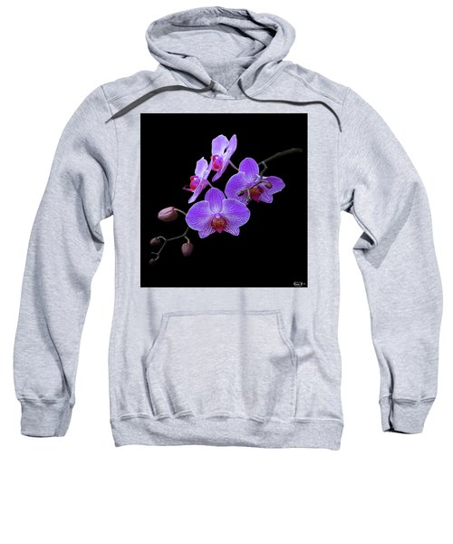 The Orchids Sweatshirt