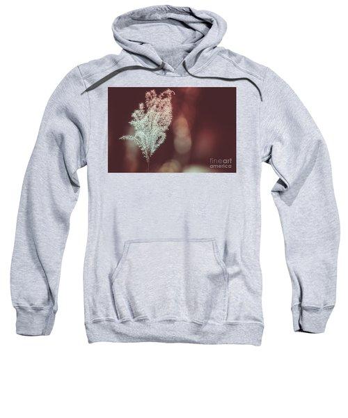 The Shine Sweatshirt