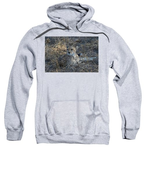 Cheetah In Repose Sweatshirt