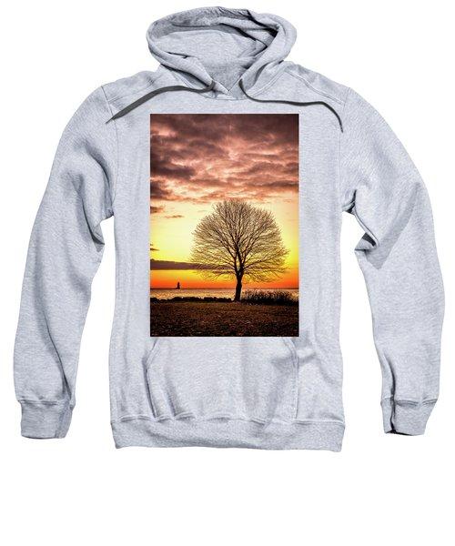 The Tree Sweatshirt