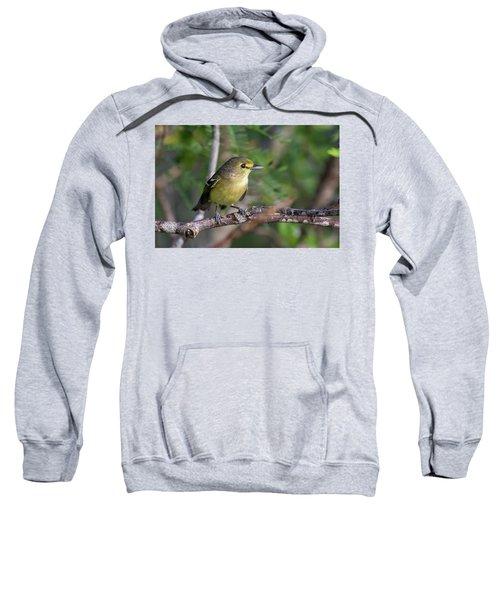 Thick-billed Vireo Sweatshirt