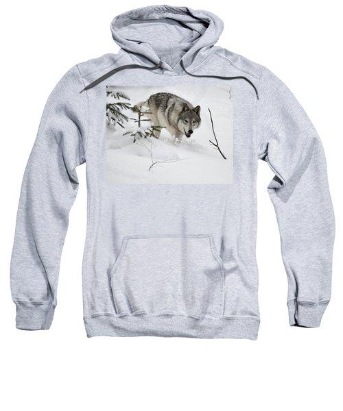 Timber Wolf Sweatshirt