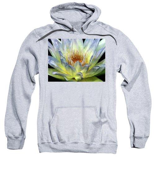 Touch Of Lemon 4504 Idp_2 Sweatshirt