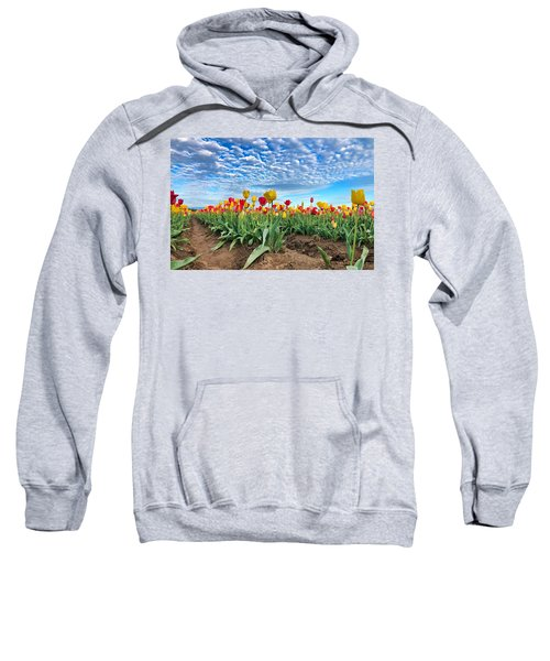 Touch The Sky Sweatshirt