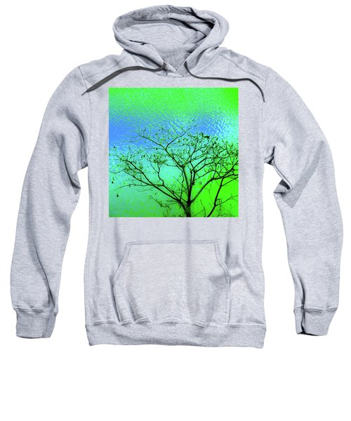 Tree And Water 3 Sweatshirt