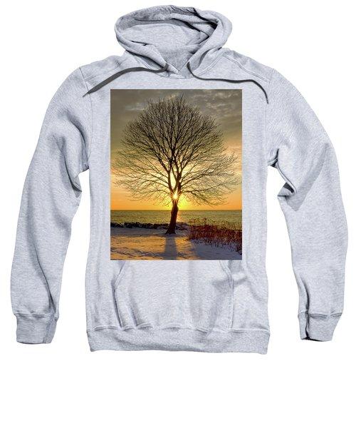 Tree Framed Sunrise New Hampshire Sweatshirt