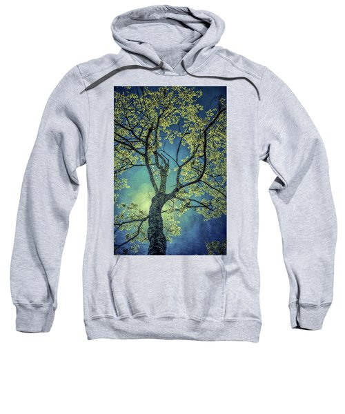 Tree Tops 0945 Sweatshirt
