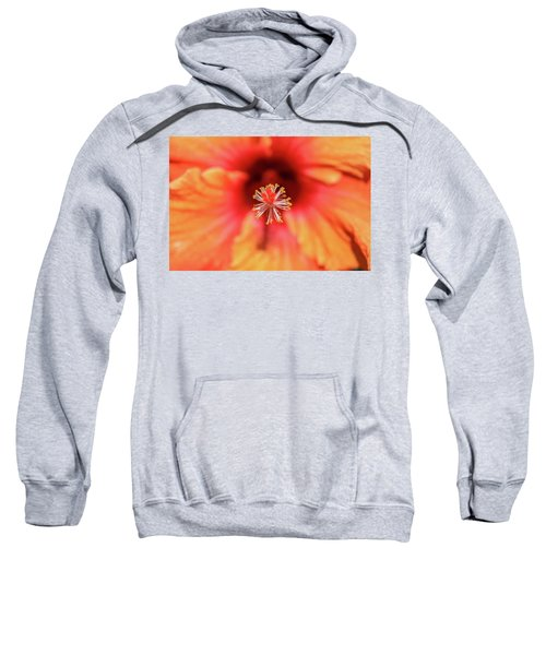 Tropical Hibiscus  Sweatshirt