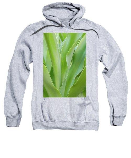 Tropical Leaf Sweatshirt