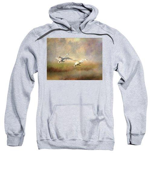 Trumpeter Swan Landing - Painterly Sweatshirt