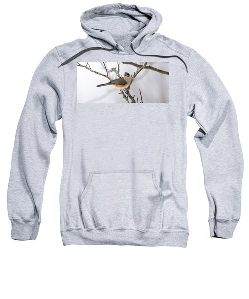 Tufted Titmouse Winter Tranquility Sweatshirt