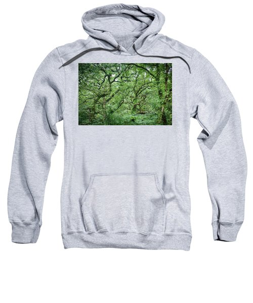 Twisted Forest Full Color Sweatshirt