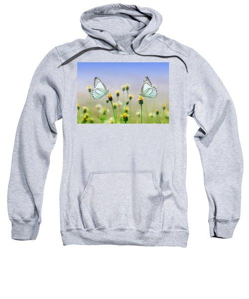 Two Butterflies Sweatshirt