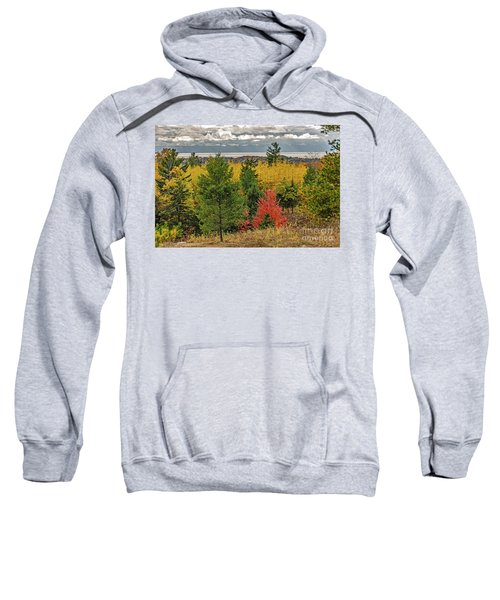 Vibrant Shades Of Red, Green, And Yellow Leaves Sweatshirt