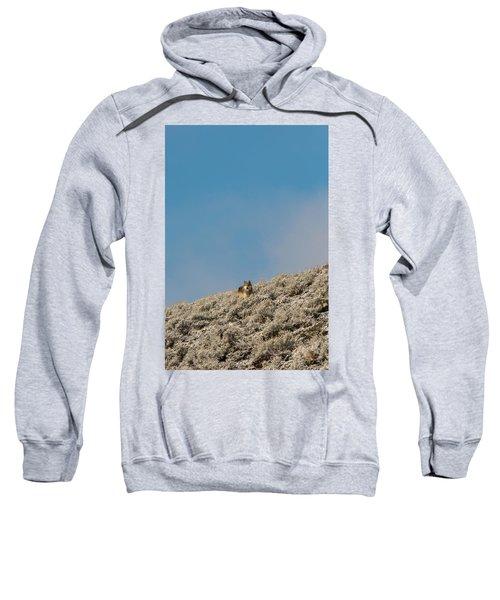 W24 Sweatshirt