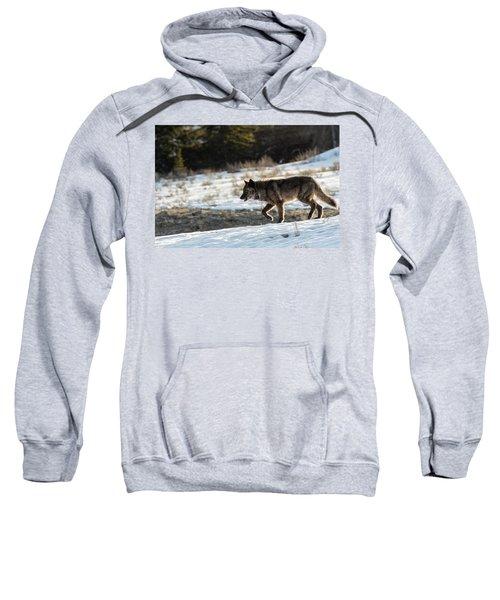 W27 Sweatshirt